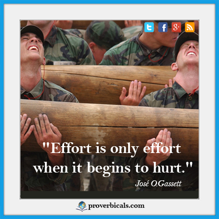 efforts-proverb