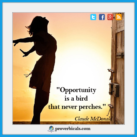 Saying about opportunities